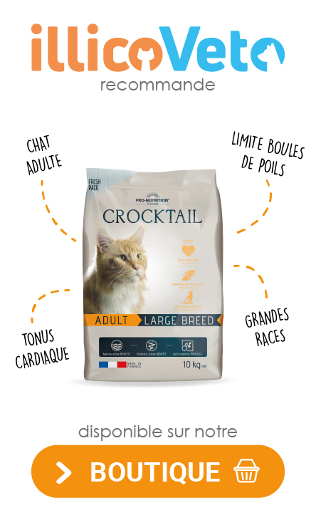 banniere_crocktail_produit